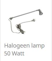Halogeen lamp 50 Watt